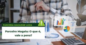 Read more about the article Parceiro Magalu: O que é, vale a pena?